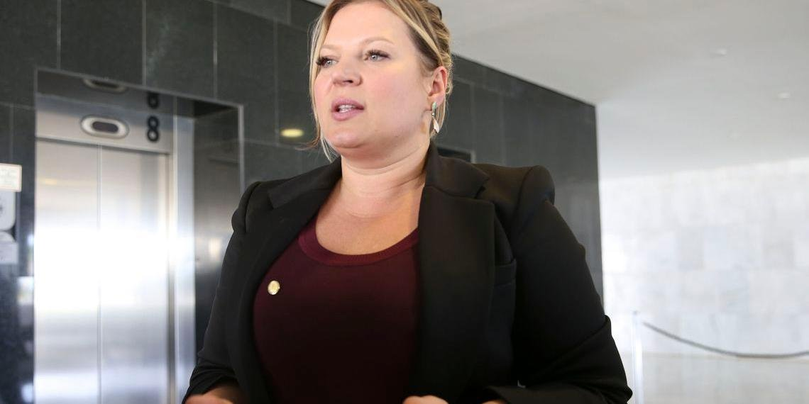 Deputada relatou que definição foi unanimidade