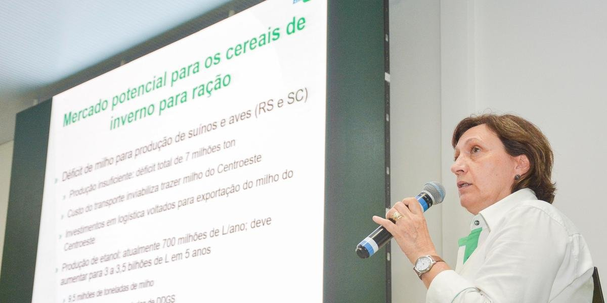 Teresinha Marisa Bertol, da Empraba, participou de explanação sobre cereais nessa quarta