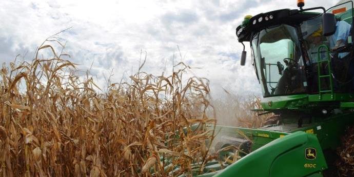 Segundo IBGE, devem ser produzidas 5 milhões de toneladas a mais este ano