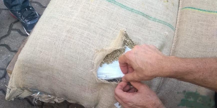Carga interceptada estava escondida em meio a sacos de café