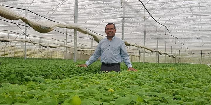 Resultado de imagem para Sustentabilidade será moeda de troca do agronegócio, diz diretor da Embrapa
