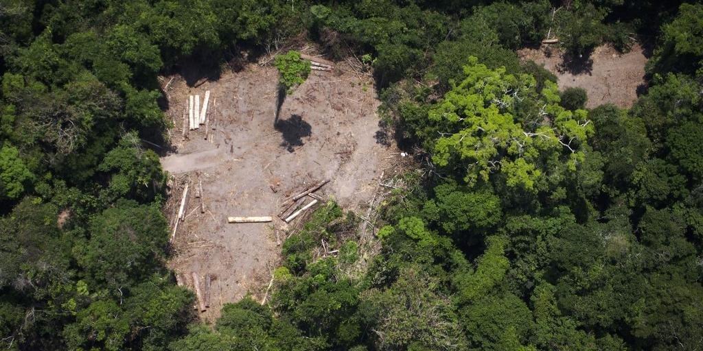 Amazônia cortará apoio de R$ 155 milhões à projetos na Amazônia