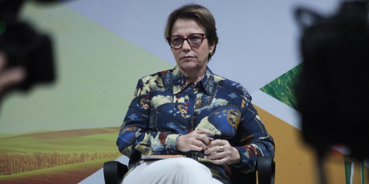 Inicialmente planejada para quarta e quinta, vinda da ministra da Agricultura, Tereza Cristina, para Esteio ocorrerá agora na quinta e sexta