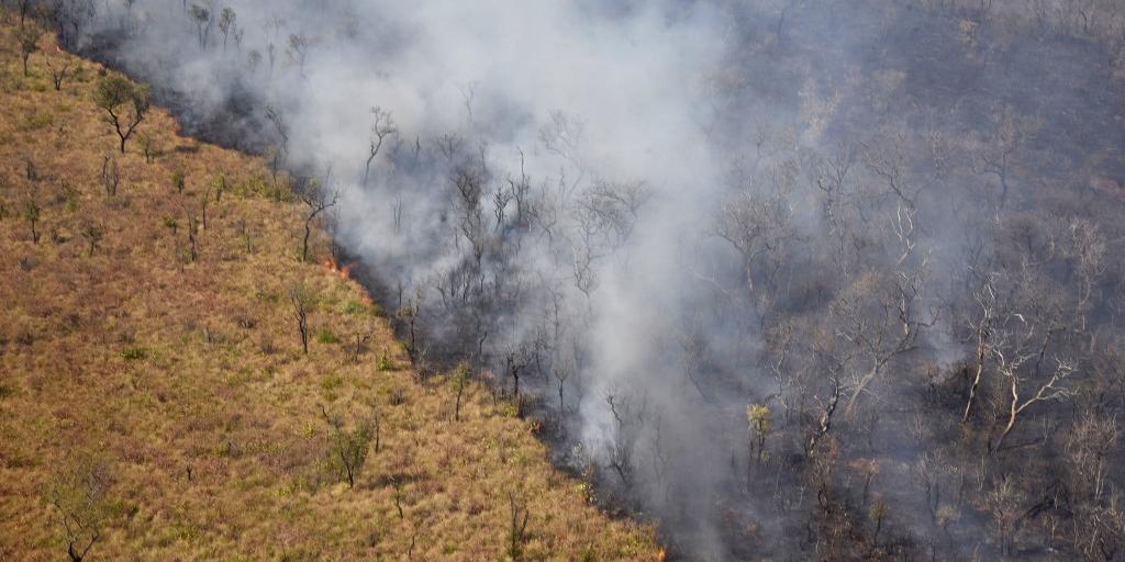 Floresta queima desde agosto