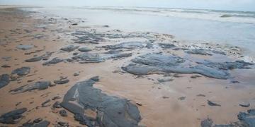 Comunicado ainda afirma que aparecimento do óleo se deve