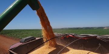 Colheita de soja favoreceu expansão do PIB gaúcho no primeiro semestre