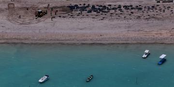 Projeção é recolher óleo residual nas marés baixas
