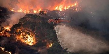 Autoridades utilizam todos os recursos na tentativa de mitigar as chamas
