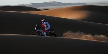 Legado do raçudo português fica eternizado nas areias dos desertos do mundo