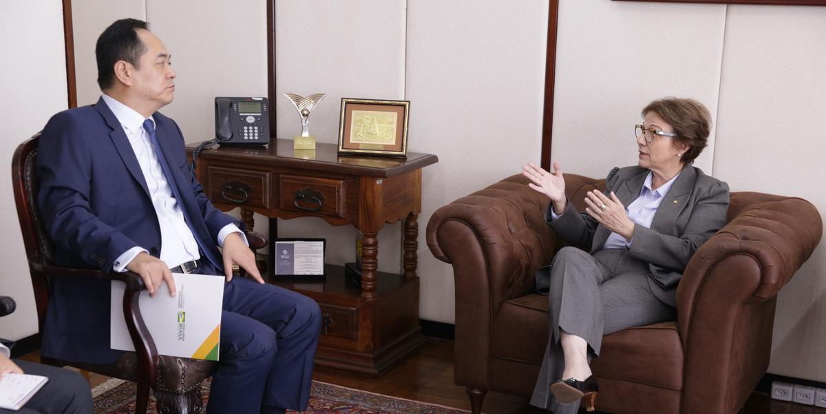 Ministra teve audiência com o Embaixador da República Popular da China, Yang Wanming