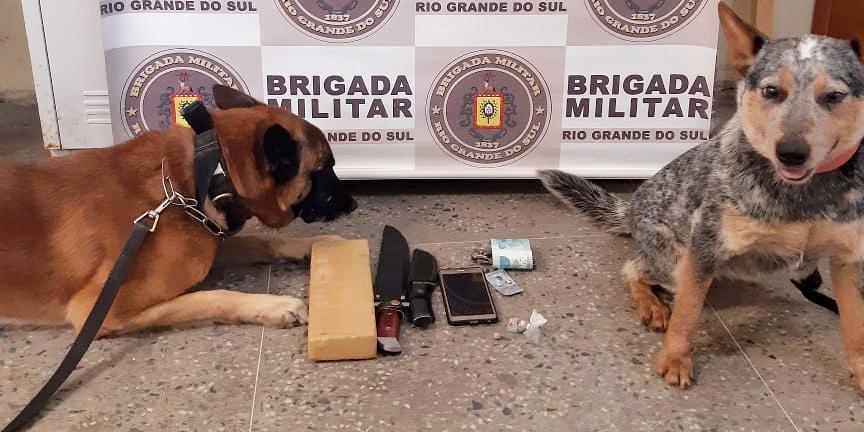Com auxílio de cães farejadores, os policiais militares efetuaram o flagrante na manhã desta sexta-feira