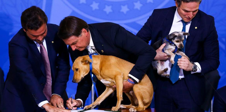 Bolsonaro sancionou lei nesta terça-feira