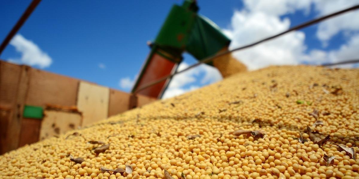 O complexo soja foi responsável por uma queda de 1,2 bilhão de dólares