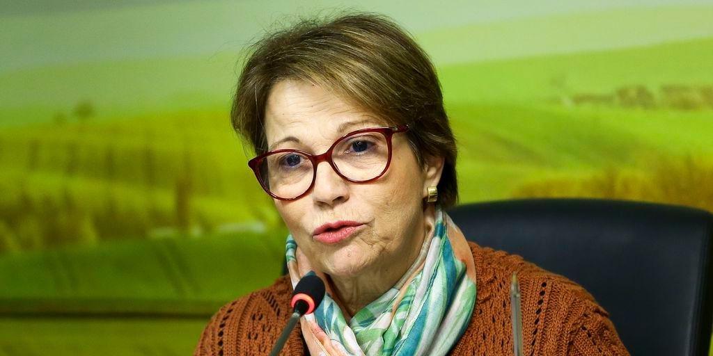 Ministra propõe grupo interministerial para solucionar desperdício de alimentos