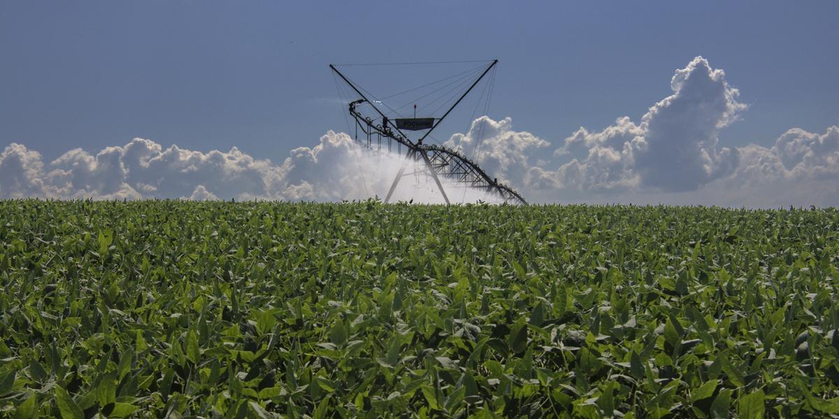 Plano Safra ampliou recursos para investimento em irrigação
